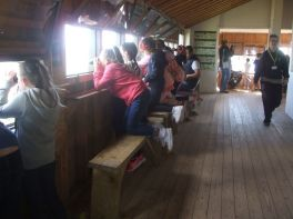 P5 trip to Castle Espie